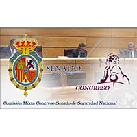 Comparecencia Comisión Mixta Seguridad Nacional