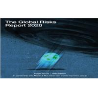 Informe de Riesgos Globales 2020