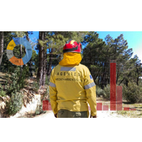 Evolución Campaña de Incendios Forestales 2019