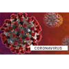 Coronavirus (2019-nCoV) - 07 de febrero 2020