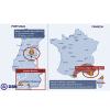 Incendios en Portugal y Francia