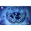 El Consejo de Seguridad de la ONU visita Colombia para reafirmar el respaldo al proceso de paz.