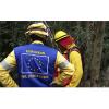 Continúa la participación de España en los trabajos de extinción de los incendios forestales de Chile