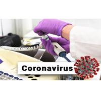 Coronavirus (2019-nCoV) - 08 de febrero 2020